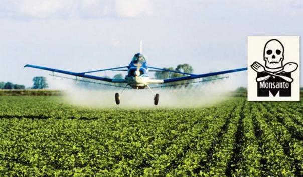 L'allemand Bayer veut racheter Monsanto