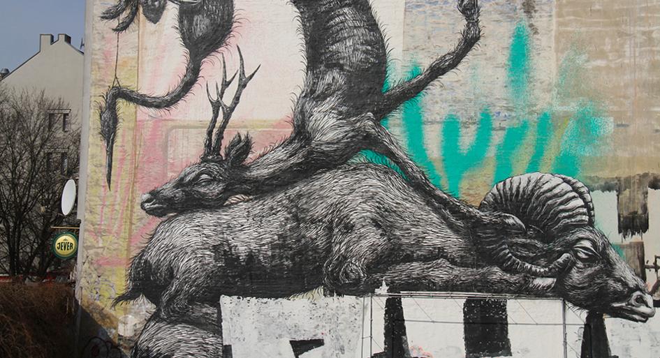 Roa street art berlin 2