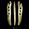 Un instrument a tresser vieux de 40 000 ans